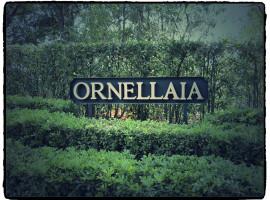 Tenuta ORNELLAIA .. (1)