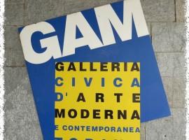 GAM Torino  (1)