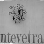 montevetrano-1